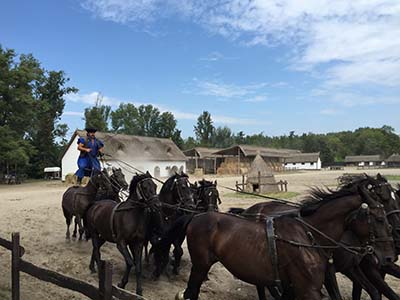 Siófok Taxi - Experience the unique and romantic atmosphere of the puszta! Horse shows, horse-carriage trips, traditional hungarian hospitality and live folk musicians. The real essence of the country!